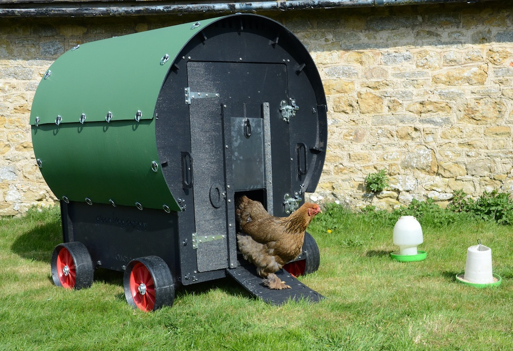 Chicken Wagon