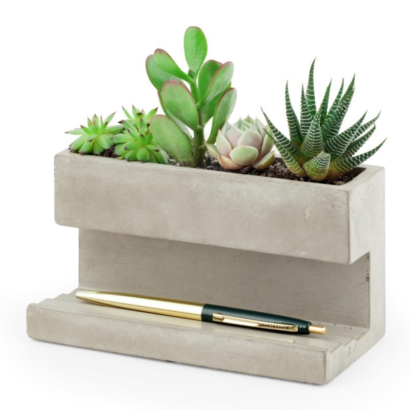 concrete desk planter with cacti green plants at the top